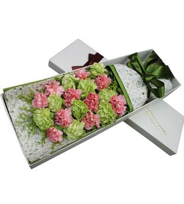 上海-19枝康乃馨花...
