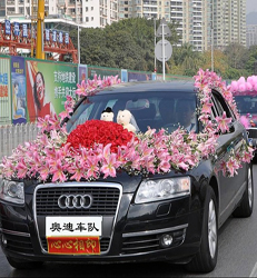 上海-豪华婚车 满满...