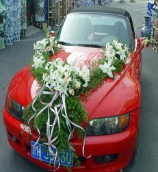 上海-新款v型花车
