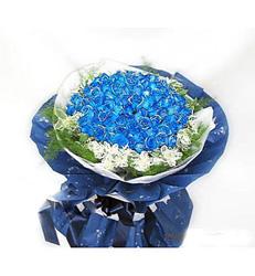 上海-蓝色至爱