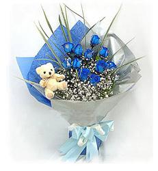 上海-蓝色爱恋