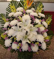 上海-祭奠鲜花11