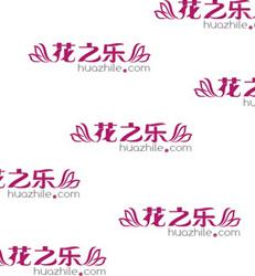 上海-鲜花补款
