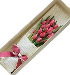 上海-粉郁金香-花盒