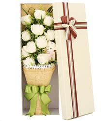 上海-11枝白玫瑰花...