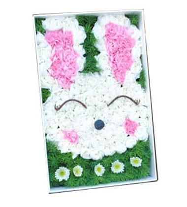 上海-可爱兔子 礼盒