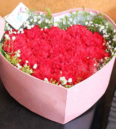 上海-遥寄祝福--花...