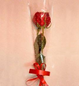 上海-单枝玫瑰