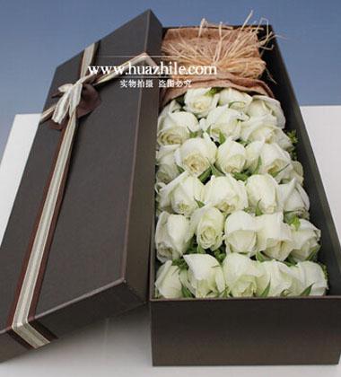 上海-33枝白玫瑰花...