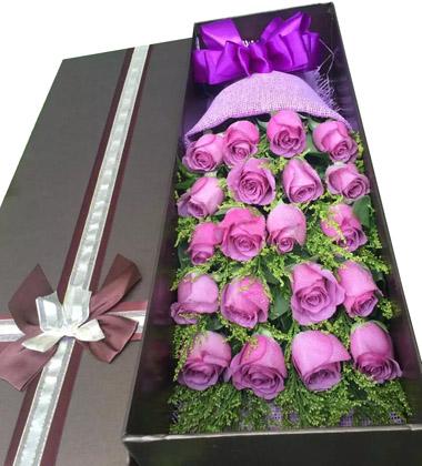 上海-19枝紫玫瑰花...