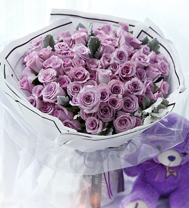 上海-紫精灵