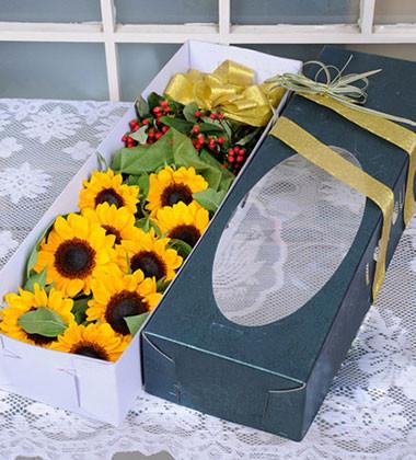上海-向日葵花盒